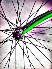 cycle wheel spokes