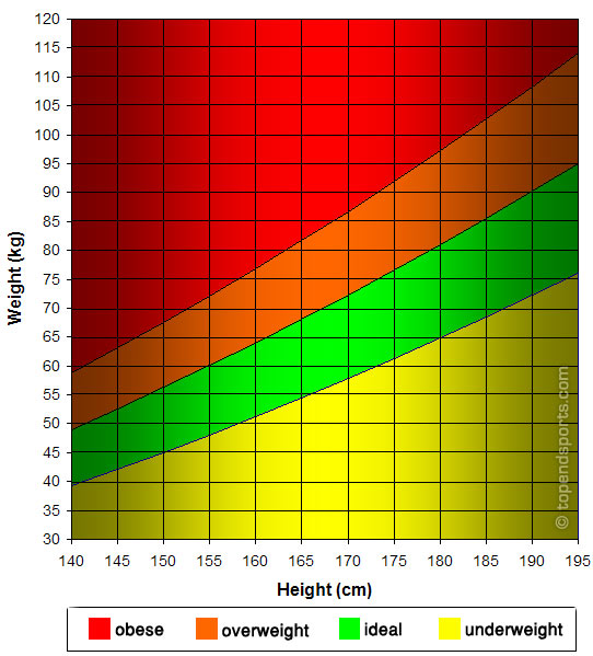 Height Weight Graph - Metric